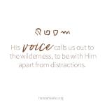 voicewilderness